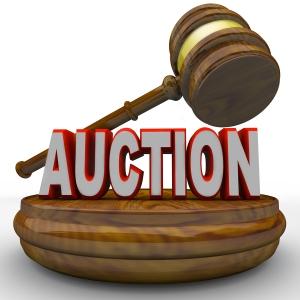 OWIT Auction